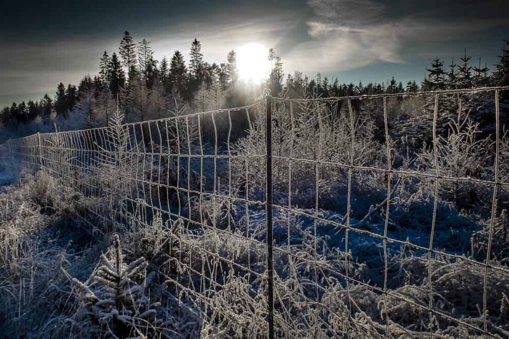 Vintertiden synger på sidste vers