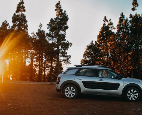 Citroën rammer plet