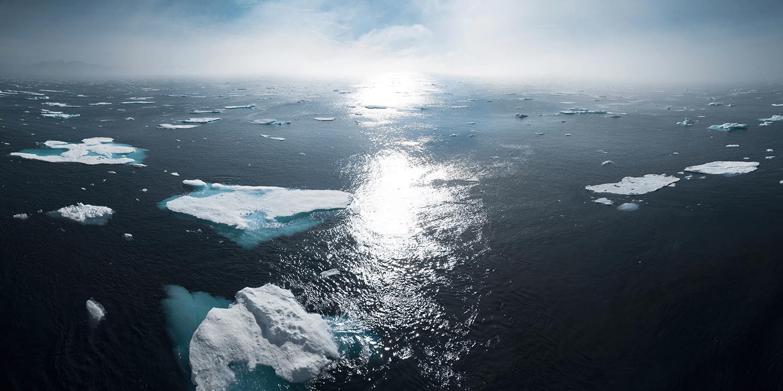 Klimabekymringer afspejles i valg af NGO