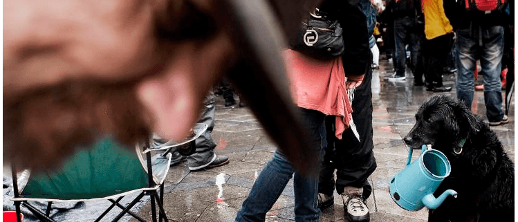 Danskerne: Politikerne har skabt fattigdommen i Danmark
